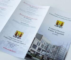 Cork City Council work by Darren Forde